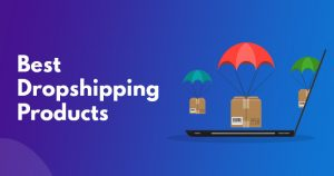SaleHoo Dropshipping Review